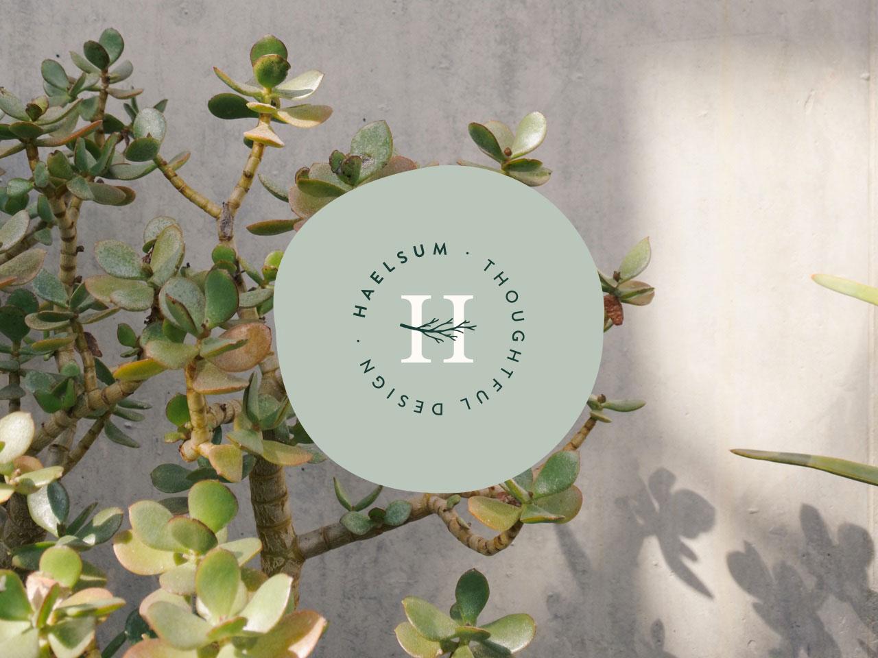 blog-welcome-haelsum