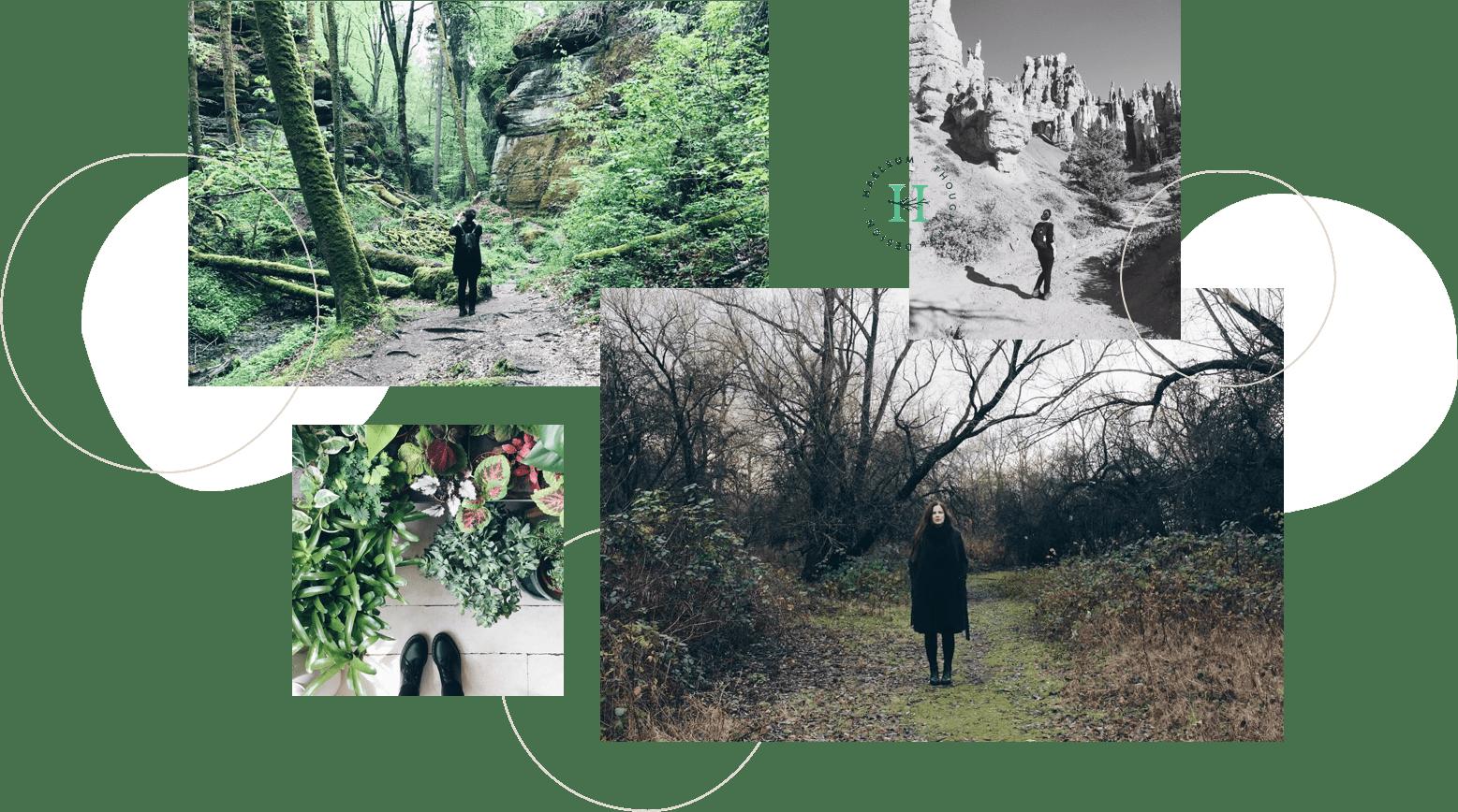 Haelsum collage