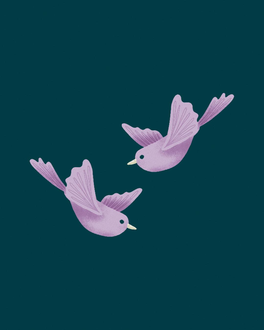Cover illustration for Judy Spencer's 'The Girl in the Birdbath'